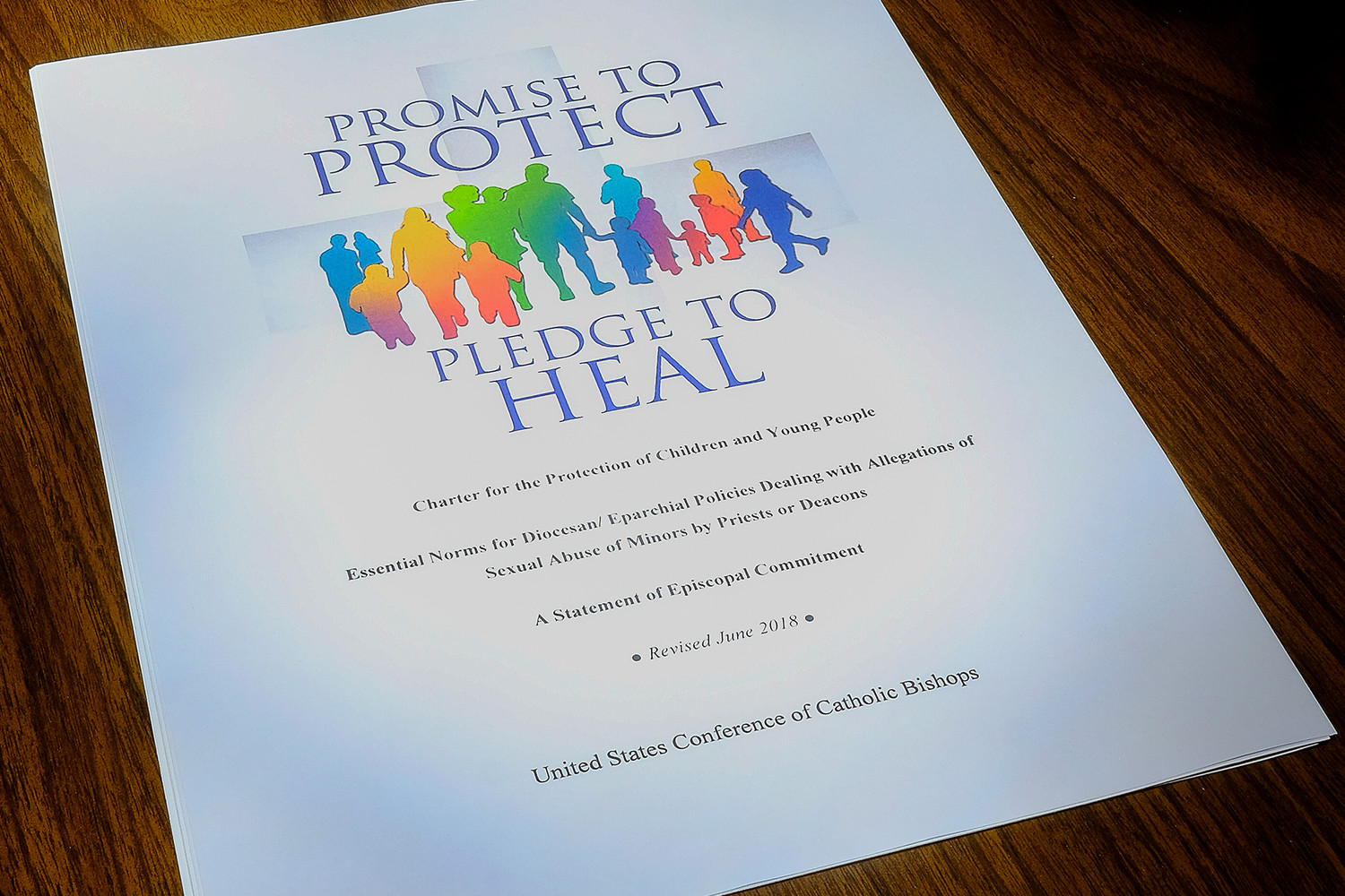 "This is the cover of the USCCB ""Charter for the Protection of Children and Young People."""