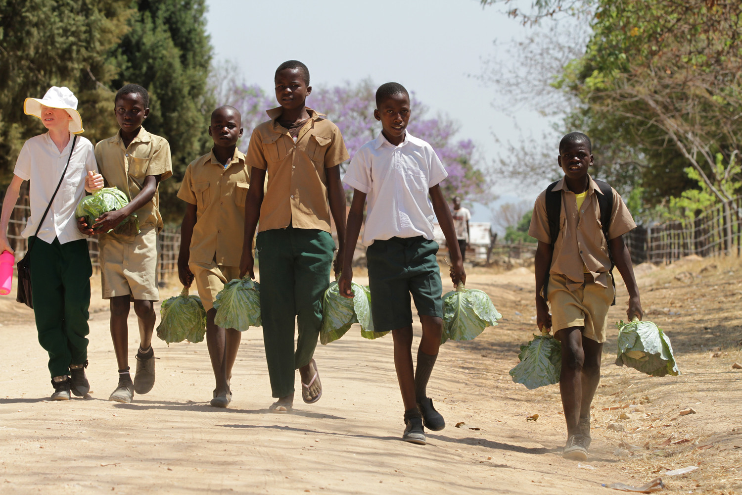 Boys carry cabbages to be prepared for lunch by their parents in 2017 in Harare, Zimbabwe. World Food Day is celebrated Oct. 16 to mark the date in 1945 the U.N. Food and Agriculture Organization was founded.