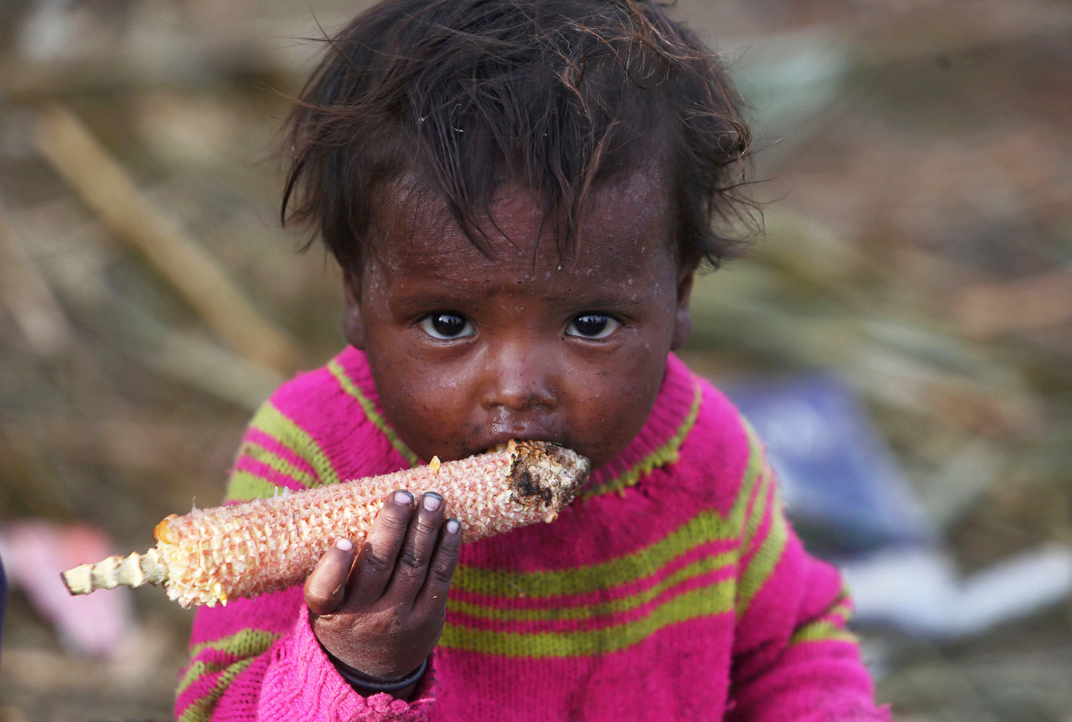 A child eats corn outside a makeshift shelter in 2015 in the Kashmir region of India. World Food Day is celebrated Oct. 16 to mark the date in 1945 the U.N. Food and Agriculture Organization was founded.