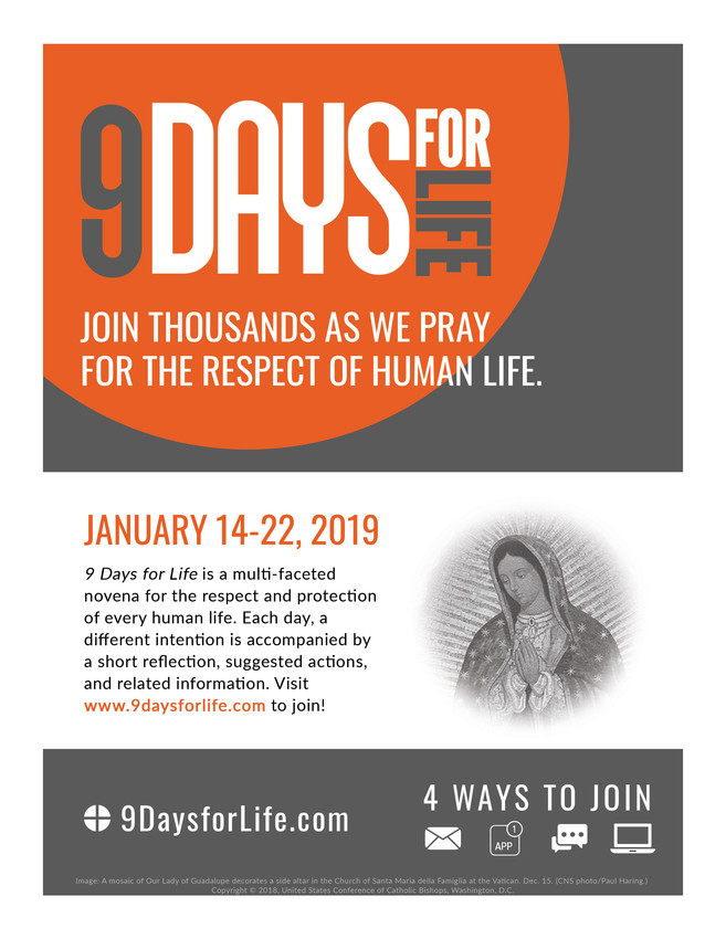 """The U.S. Conference of Catholics Bishops announced Dec. 18 the annual """"9 Days for Life"""" prayer and action campaign will run Jan. 14 to Jan. 22. Pictured is promotional material for the campaign."""