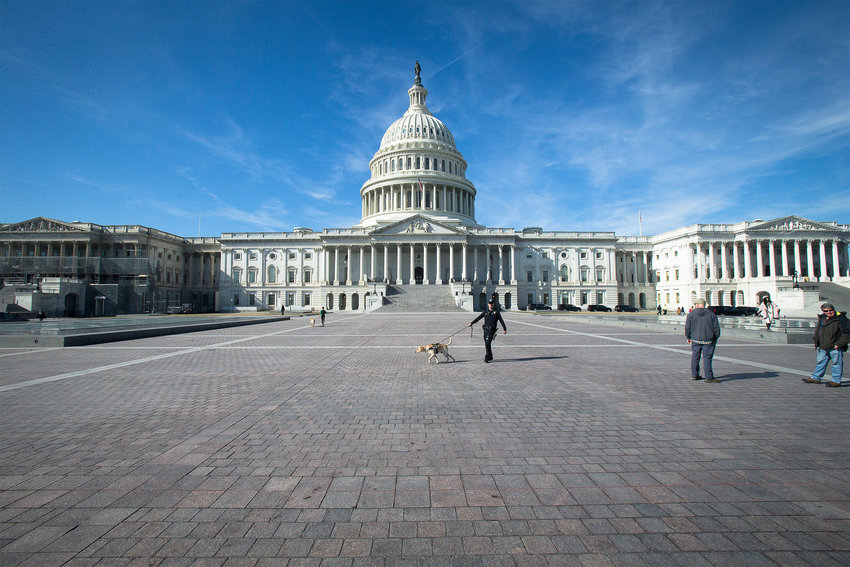"The U.S. Capitol is seen in Washington Feb. 5, 2019. Five U.S. bishops, chairmen of U.S. Conference of Catholic Bishops' committees or subcommittees, said May 17 they were ""gravely disappointed"" with the U.S. House of Representatives passage of the Equality Act."