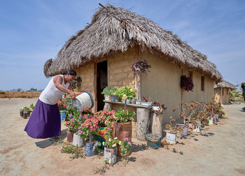 "Celestina Fernandes da Silva, a Catholic activist, waters flowers in front of her home in the Wapishana indigenous village of Tabalascada, Brazil, April 3, 2019. Franciscan Father Joao Messias Sousa, who works among indigenous in the Amazon, said the people believe ""God is in all things, but those things are not gods."""