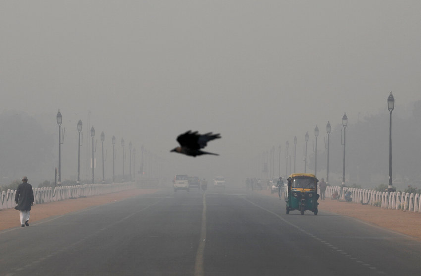 "A bird flies through smog in New Delhi, India, Nov. 13, 2019. Pope Francis told participants at a Vatican City conference on criminal justice Nov. 15, that there are plans to include a definition of ecological and other ""psycho-social phenomenon"" hate sins in the Catechism of the Catholic Church."