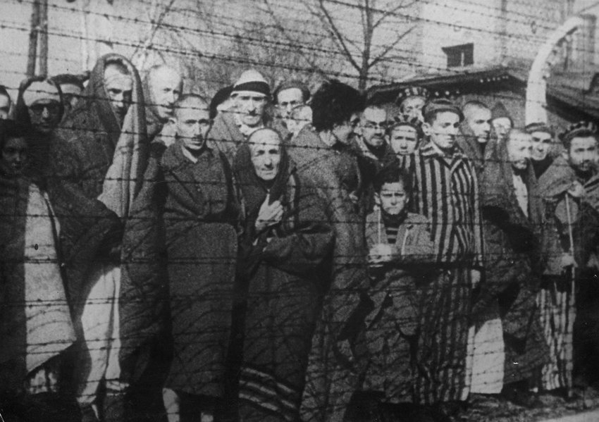 Men, women and children are seen behind barbed wire after the liberation of the Nazi death camp Auschwitz-Birkenau in 1945 in Oswiecim, Poland. Historians estimate that the Nazis sent at least 1.3 million people to Auschwitz between 1940-45, and it is believed that some 1.1 million of those perished there. Auschwitz was liberated by the Russian Army Jan. 27, 1945.