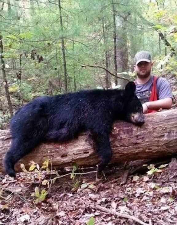 Bobby Ruff was hunting for deer when he killed his first black bear. The state allows hunters to kill two bears a year.
