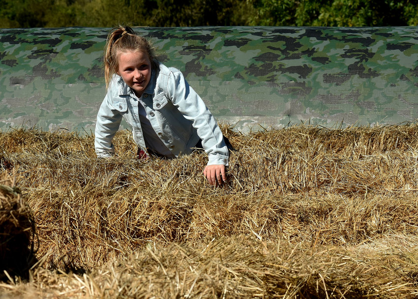 Seven-year-old Reese Montgomery of Kennesaw climbs her way through the hay maze at the Pumpkin Patch Farm in Adairsville.