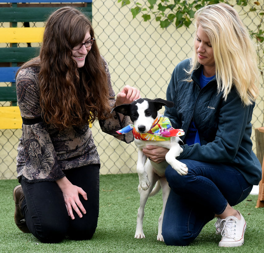 Meghan Stipe, left, of the Cartersville public library, pets Sookie, a 1-year-old mix, as Elsa Blake, of the Etowah Valley Humane Society holds her. Sookie is one of the dogs available for adoption at Saturday's DOGtober event at the library.