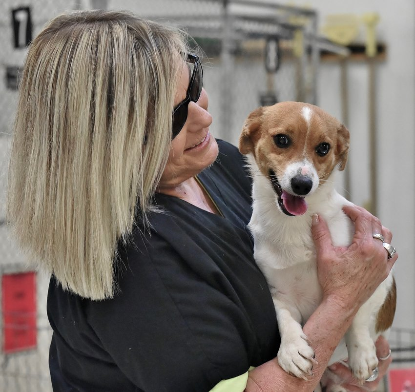 Katherine Griffin of Woodstock embraces Nibbs — a 2-year-old Jack Russell terrier — who she is adopting from the Etowah Valley Humane Society.