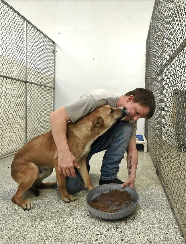 Etowah Valley Humane Society head kennel tech Nathon Sims helps Skeeter, a 3-year-old mixed breed, get settled in at the EVHS kennel on Ladds Mountain Road. Skeeter was moved to the EVHS facility Monday from the Bartow County Animal Control facility.
