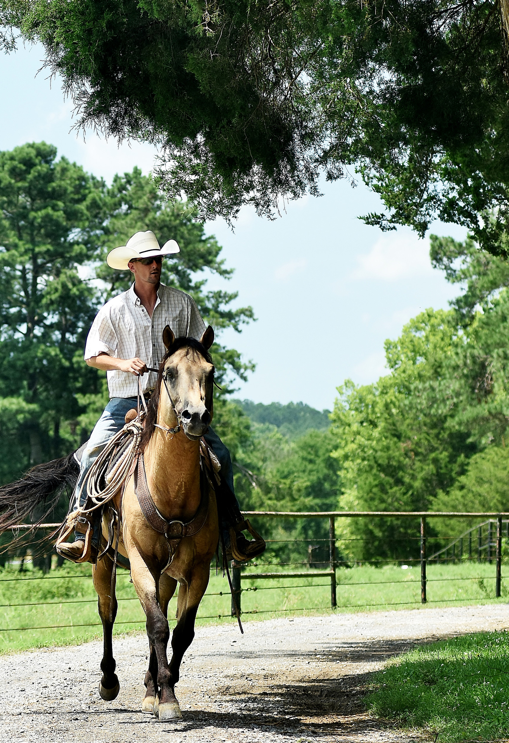 Jonathan Watkins keeps an eye on his farm's activity, from herding cattle to the construction of a new hay barn, on horseback. He was presented the Farm Family of the Year award in June.