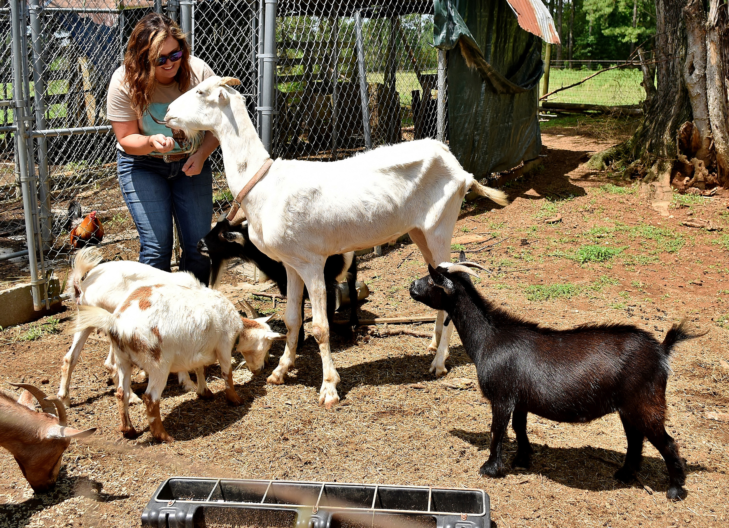 Jessica Watkins tends to a small herd of goats at the family's Cass-White Road farm.