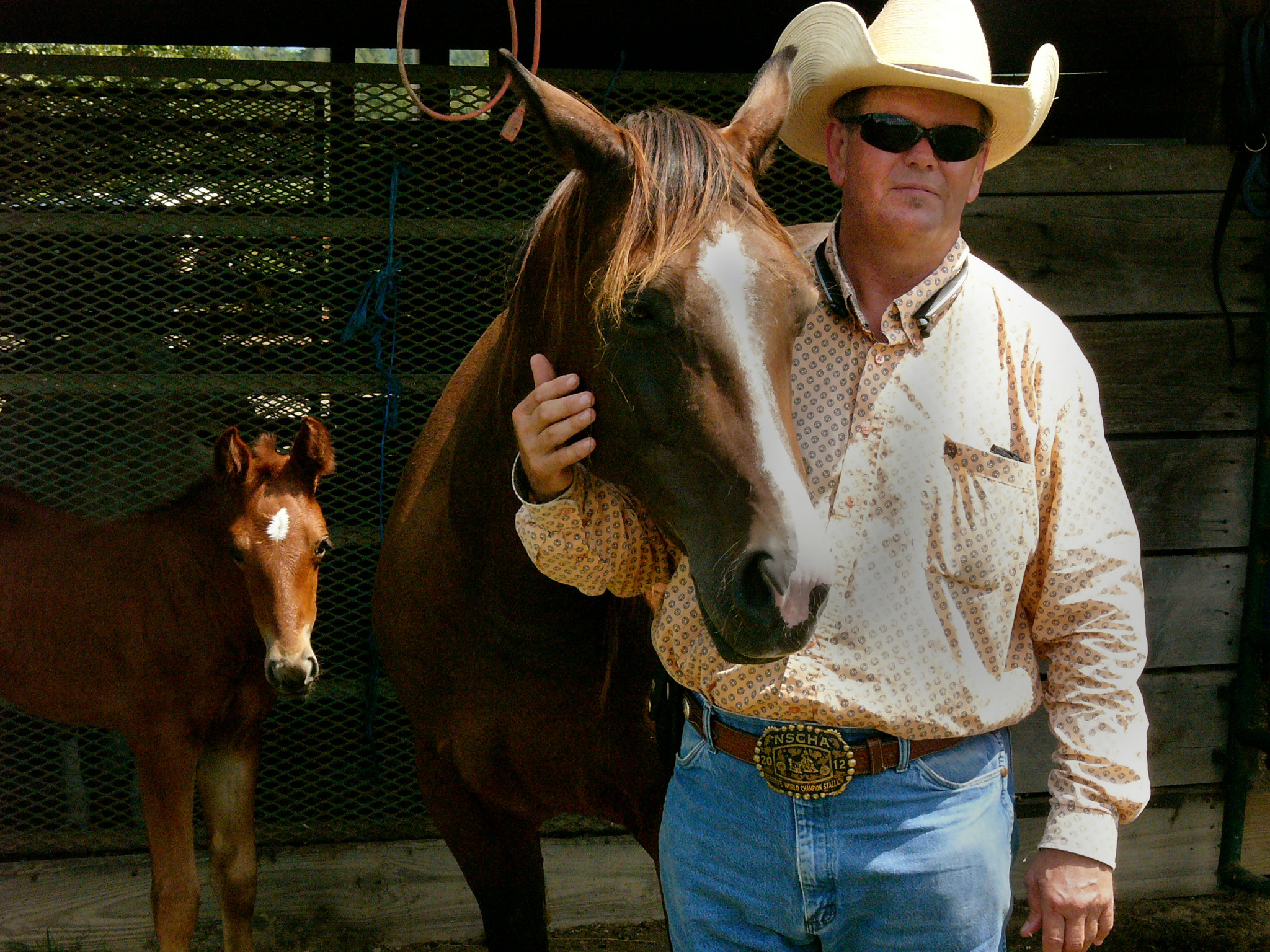Mitchell Martin is a four-time World Champion Quarter Horse trainer.