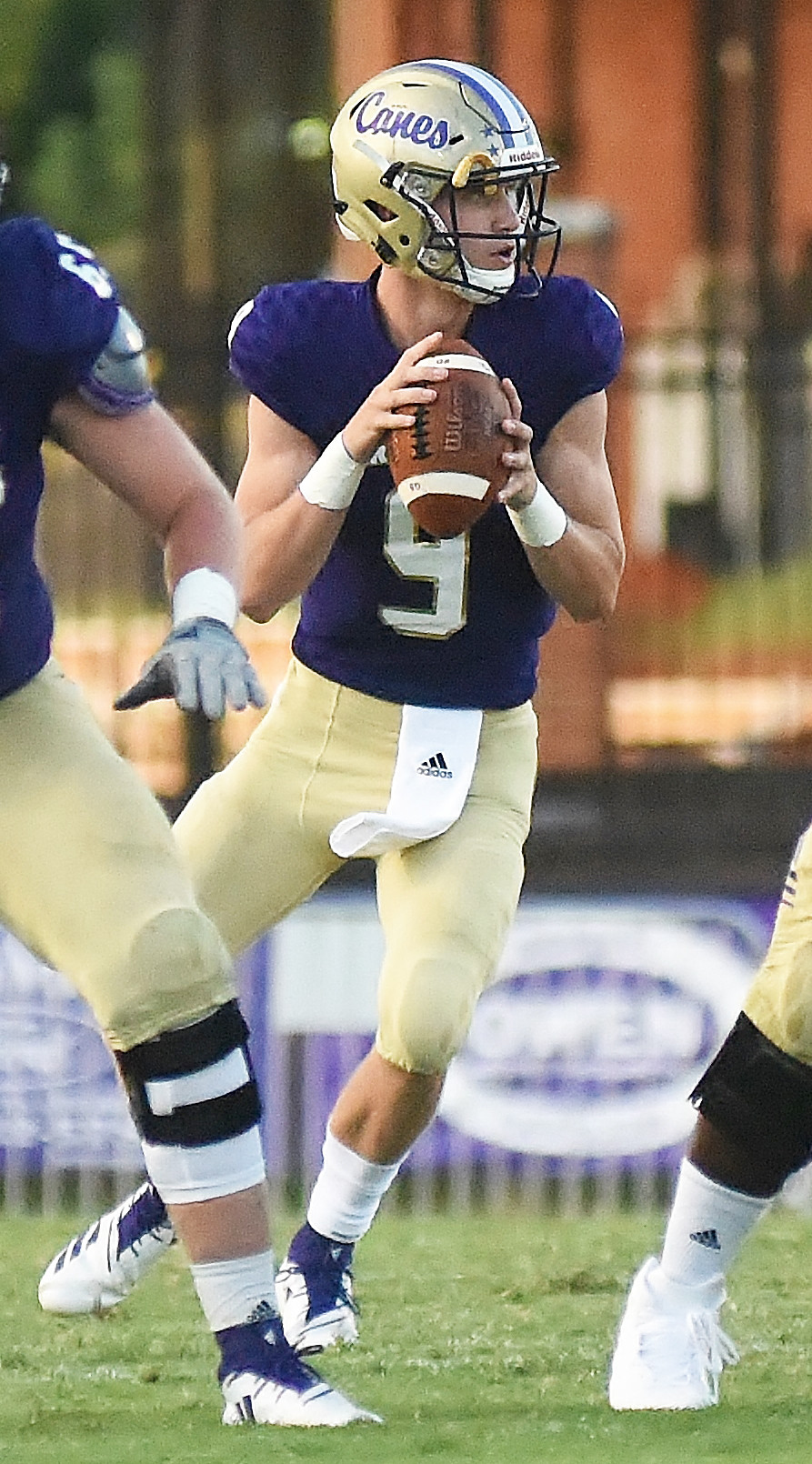 Cartersville junior quarterback Tee Webb drops back to pass during Friday's blowout win over Luella at Weinman Stadium. Webb finished 12-of-14 passing for 242 yards and six touchdowns. He also added 49 yards and a score on the ground.