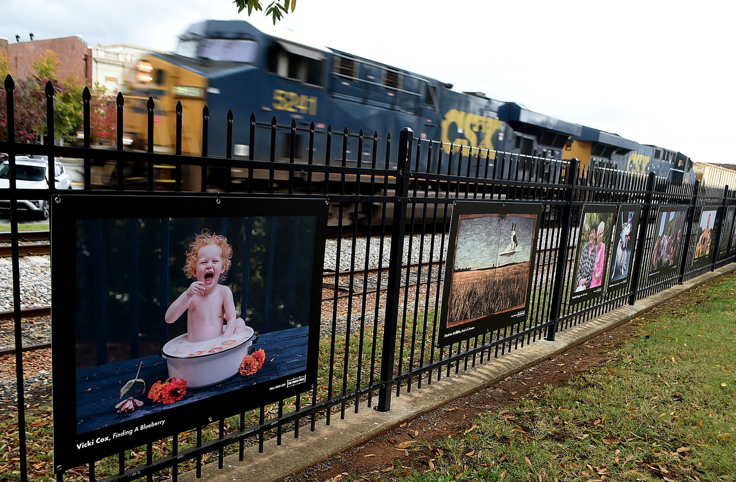 The Photo Fence in downtown Cartersville features images captured by local and regional photographers.