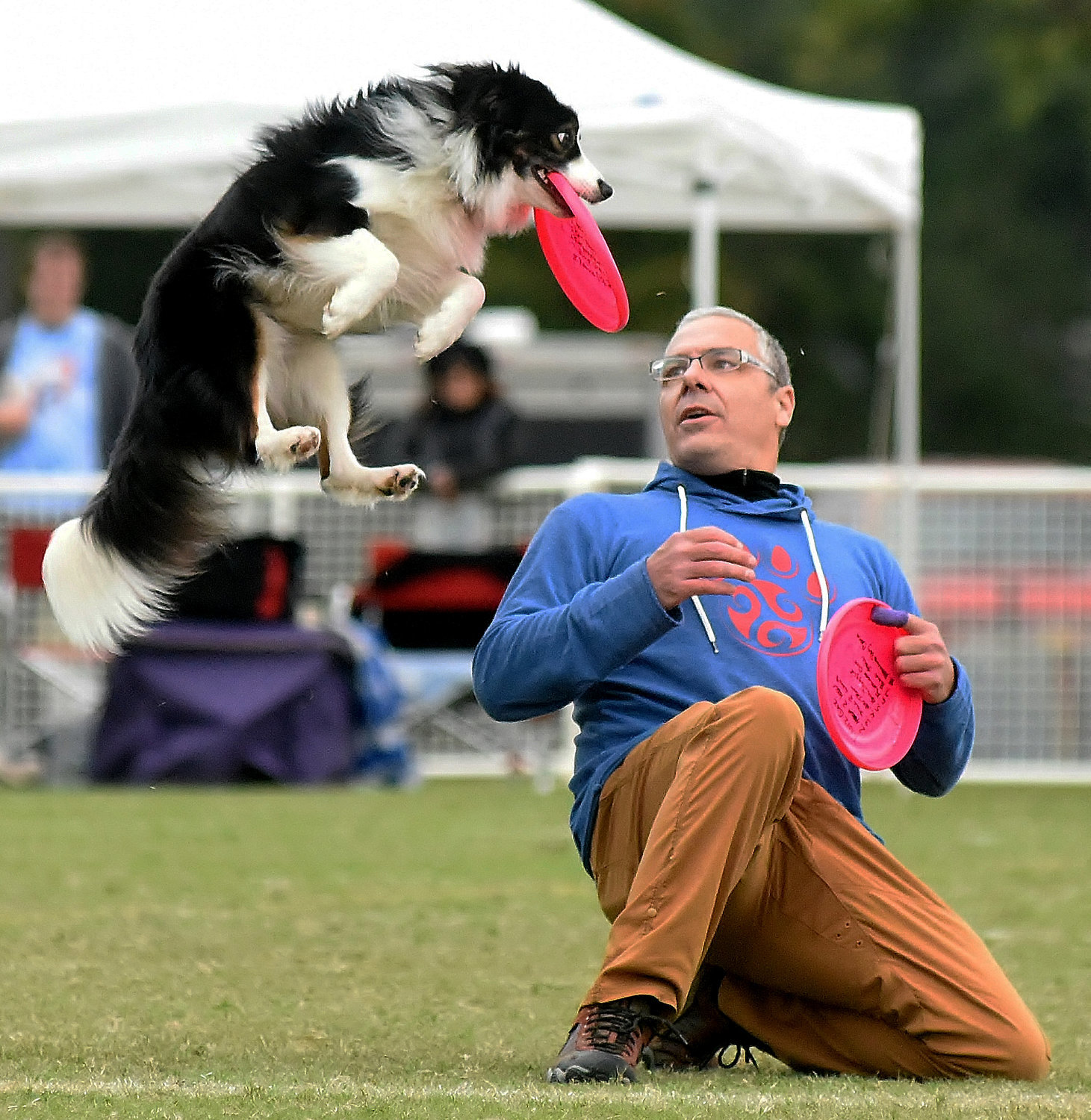 Representatives from countries as far away as Japan and China participated in the U.S. Disc Dog Nationals (USDDN)