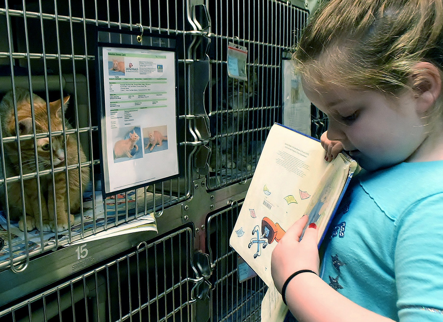 Hattie, a cat available for adoption at the Etowah Valley Humane Society on Ladds Mountain Rd. in Cartersville, listens carefully as Allatoona Elementary School first-grader and Jr. Beta Club member Morgan Donnelly reads to her.
