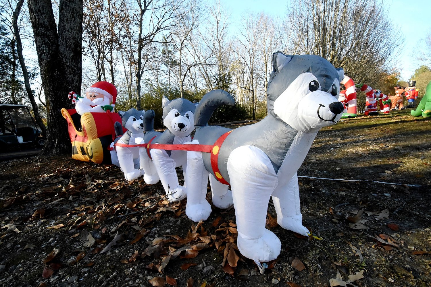 One of the inflatables on the lawn of Jerry and Sheila McGuirt features a team of Siberian huskies pulling Santa's sled.