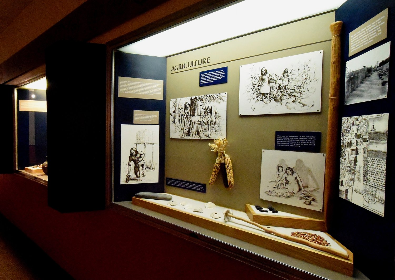 Guided tours of the Etowah Indian Mounds' museum will be offered Thursday and Jan. 22.