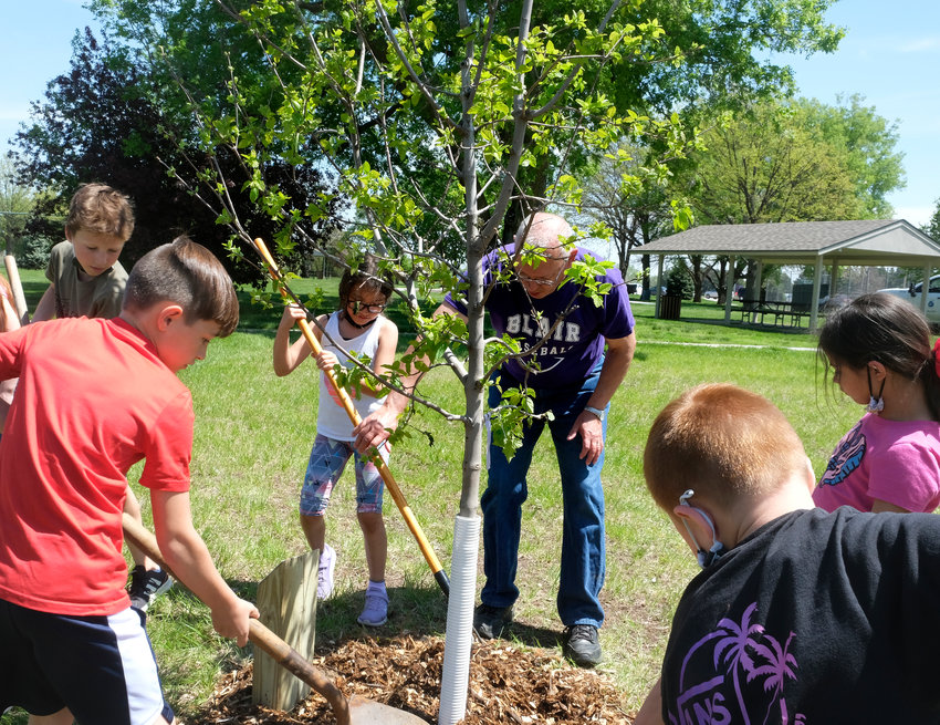 Sara Foulk's second grade students from South School assist the Blair Parks Department in planting a sapling maple tree at Stemmermann Park on Arbor Day.