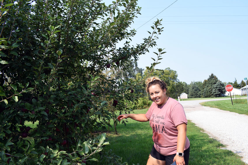 Sara Welchert examines some of he apples at Fontanelle Orchards, where she took ownership of in June.