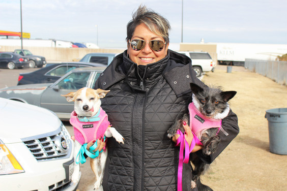 Beatriz Shapard holds her two pups Coco and Bella after a brief potty break in the grass at the Love's Travel Stop.