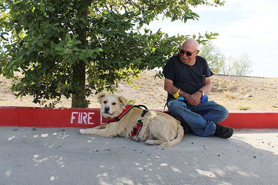 Cutline: Paul Goodman admires his dog Buster as the duo enjoy some rare shade in the Walmart parking lot.