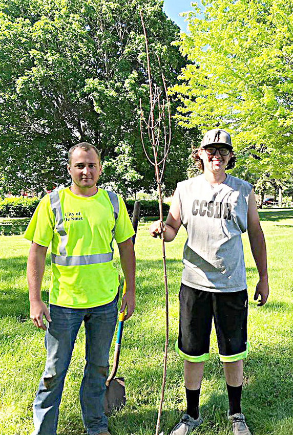 De Smet city employee Cole Munger, left, and De Smet High School 2020 graduate Hunter Halverson plant a tree June 5 at Washington Park in De Smet, a fall fiesta maple provided by the Kingsbury Conservation District. This tree is dedicated to the De Smet High School class of 2020. Each year, the conservation district also gives a tree to each third-grade student to take home and plant. The usual Arbor Day tree planting in the park was postponed because school was closed.