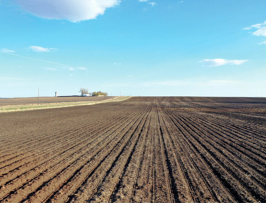 There is something about a newly-planted field, the dark brown colors, the endless numbers of rows, the blue skies and the occasional white cloud that makes it all feel like everything in the world is great.