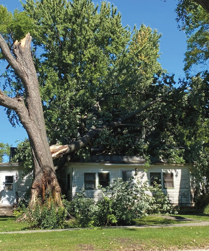 You probably heard the thunder roll early Friday morning. Another one of South Dakota's early morning storms decided to take down a couple more trees. Above, Ron Deethardt's house was the victim in De Smet.