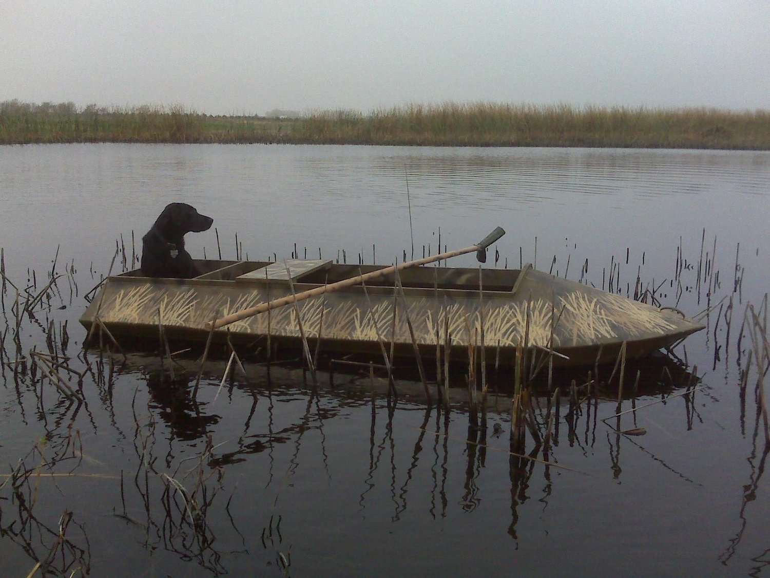 Pepper, Jim Girard's loyal black lab, waits patiently in his homemade duck boat. Jim found plans online and learned how to build this boat out of wood and fiberglass. It has proven a very stable little boat that still floats 10 years later.