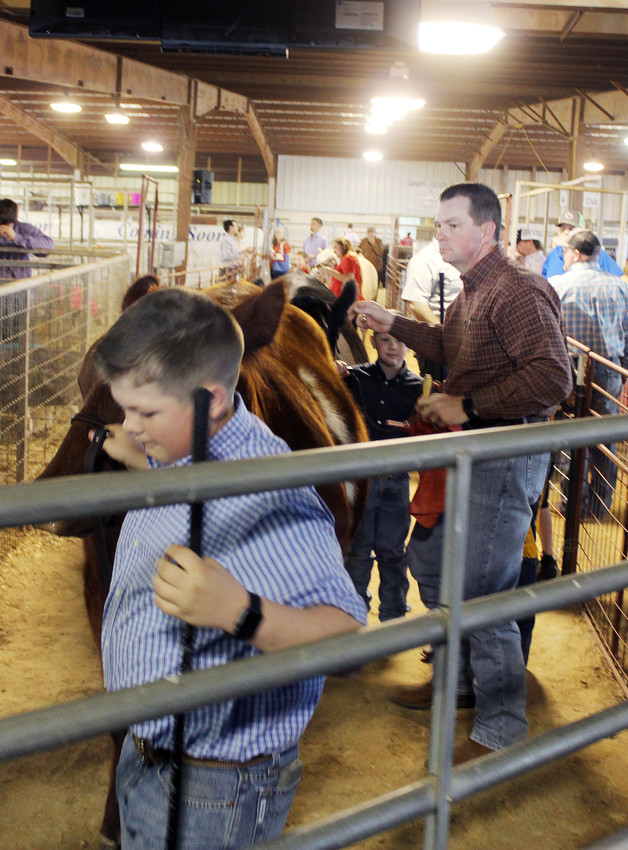 Champions and reserve champions line up for their shot in the ring at the Madison County Fair Premium Sale on Friday. Just less than $500,000 was raised for the participants.
