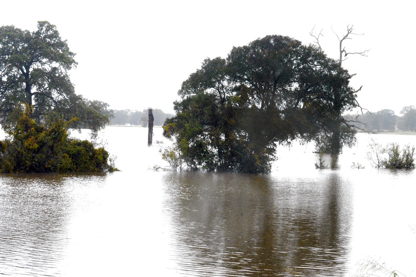 The ranchland in Madison County, such as this land on south Highway 75, spent most of last week under water.