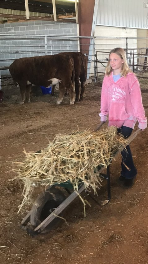 Madisonville local Emery Glennon assists in the post fair cleanup effort at the Madison County Fair Grounds on Friday.