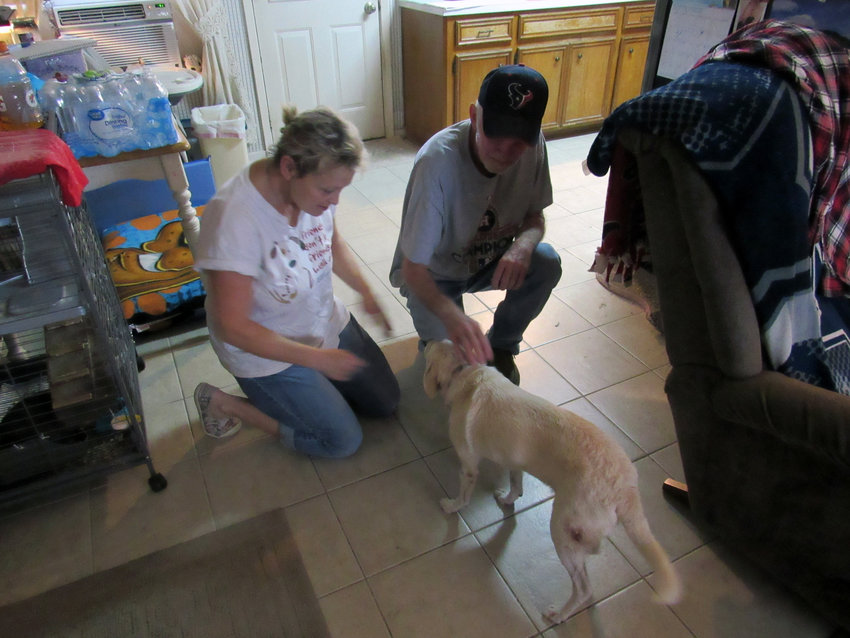 Mitch and Brandi Puckett pet their dog Ranger, who sustained a vicious attack from a Rottweiler and Pit Bull Sept. 2 and lived to tell the tale, at their Tammye Lane residence Saturday.