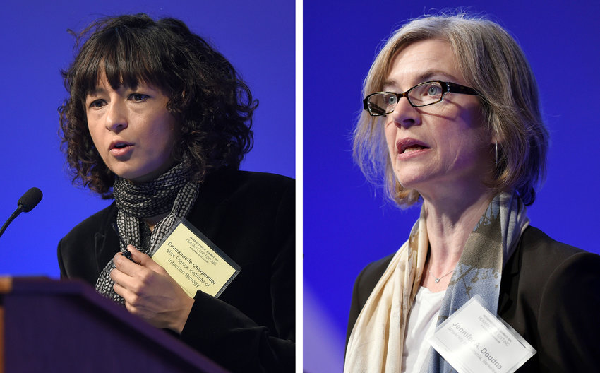 "FILE - This Tuesday, Dec. 1, 2015 file combo image shows Emmanuelle Charpentier, left, and Jennifer Doudna, both speaking at the National Academy of Sciences international summit on the safety and ethics of human gene editing, in Washington. The 2020 Nobel Prize for chemistry has been awarded to Emmanuelle Charpentier and Jennifer Doudna ""for the development of a method for genome editing."" A panel at the Swedish Academy of Sciences in Stockholm made the announcement Wednesday Oct. 7, 2020. (AP Photo/Susan Walsh, File)"