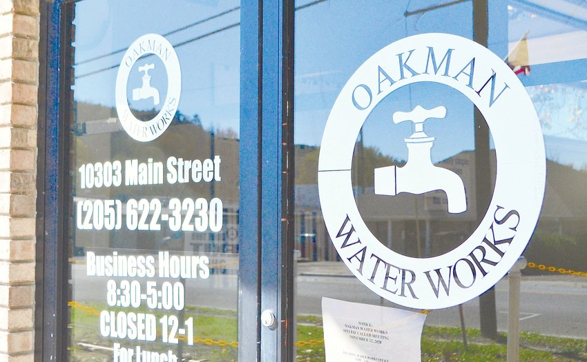 Louie Millwood has been appointed as a new member of the Oakman Water Works Board of Directors, following a heated debate.