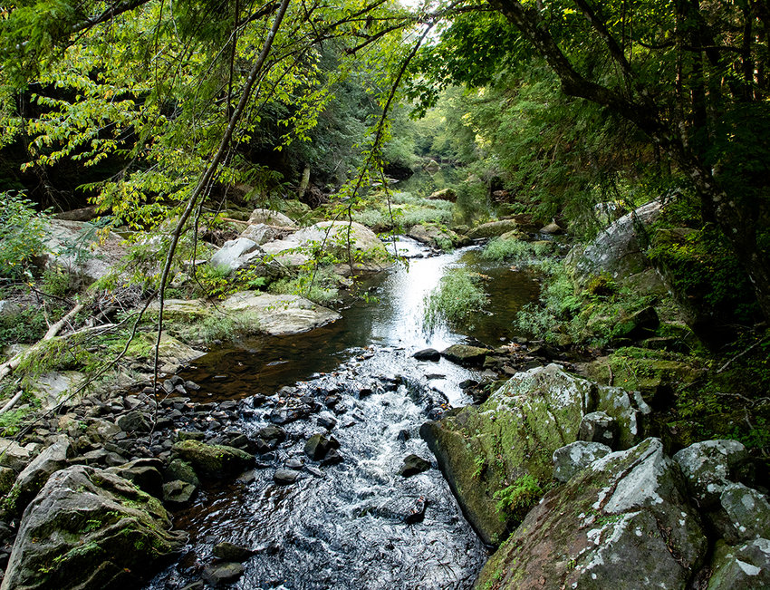 The Sipsey River runs through part of the newly-protected 40-acre property in the Sipsey Wilderness.