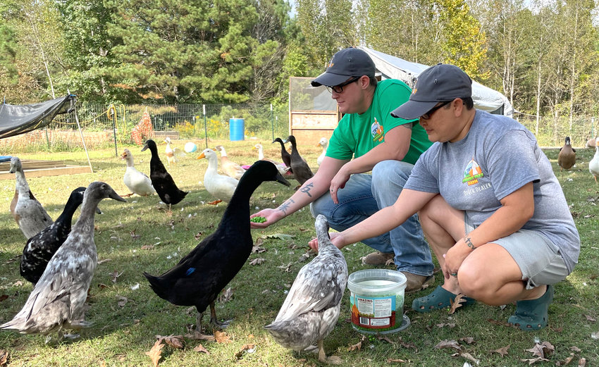 Selene and Rachel Hagan are pictured feeding ducks at their farm in Nauvoo, Quacky Feet Farm.