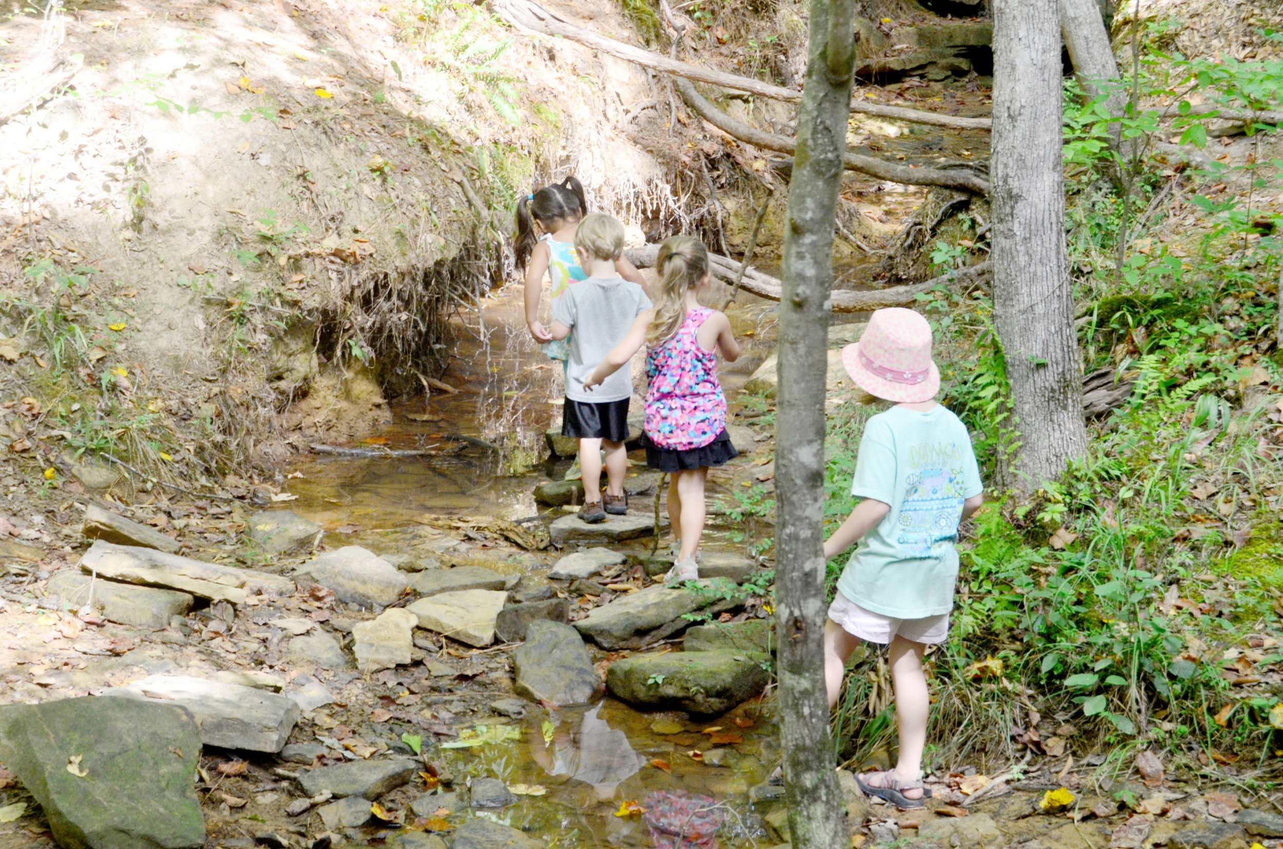 Magnolia Nature School students Lucy, Andrew, Abby and Adeline play in a small stream at Camp McDowell as they learn about nature. Daily Mountain Eagle - Lea Rizzo
