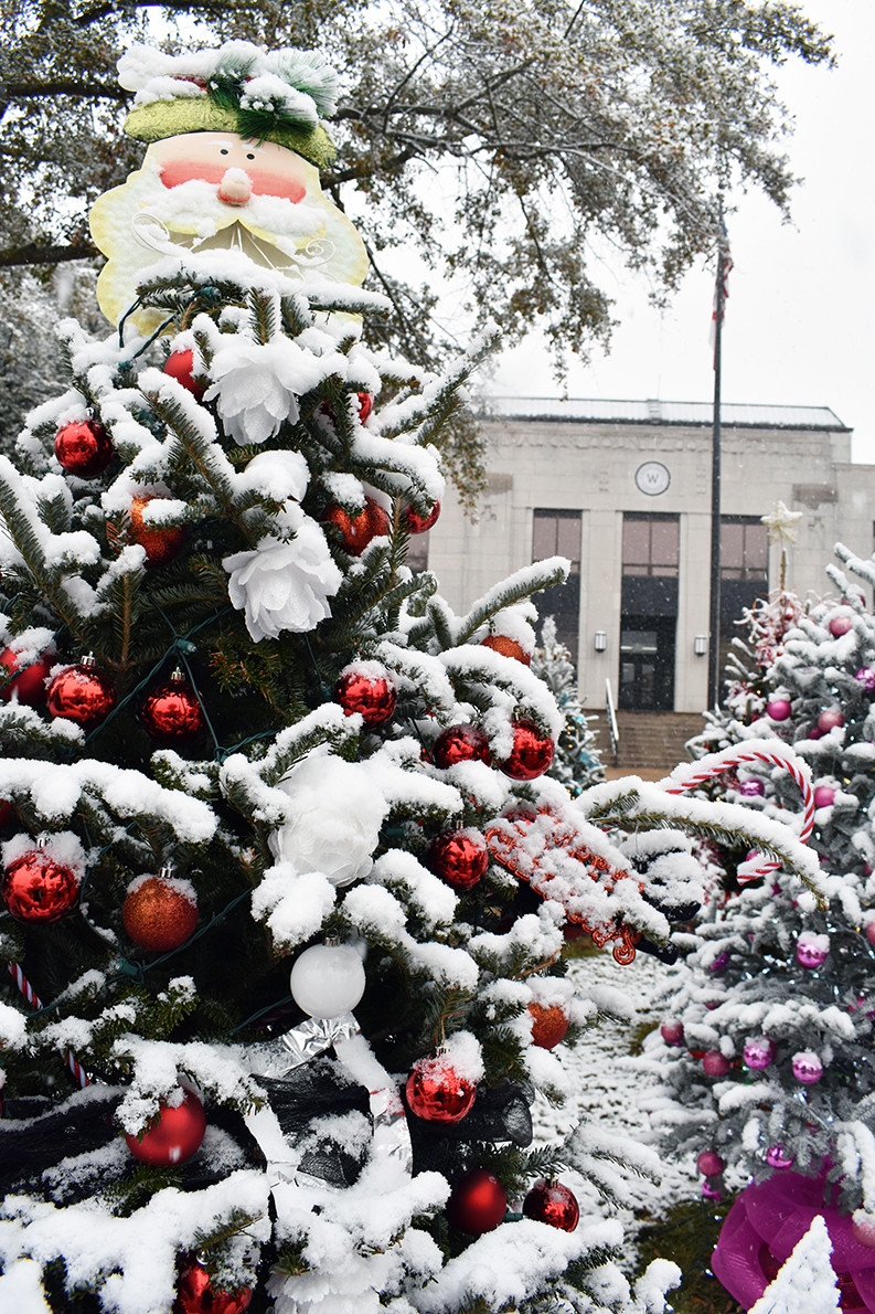 Christmas trees that are part of this year's Festival of Lights in downtown Jasper were covered in snow Friday.