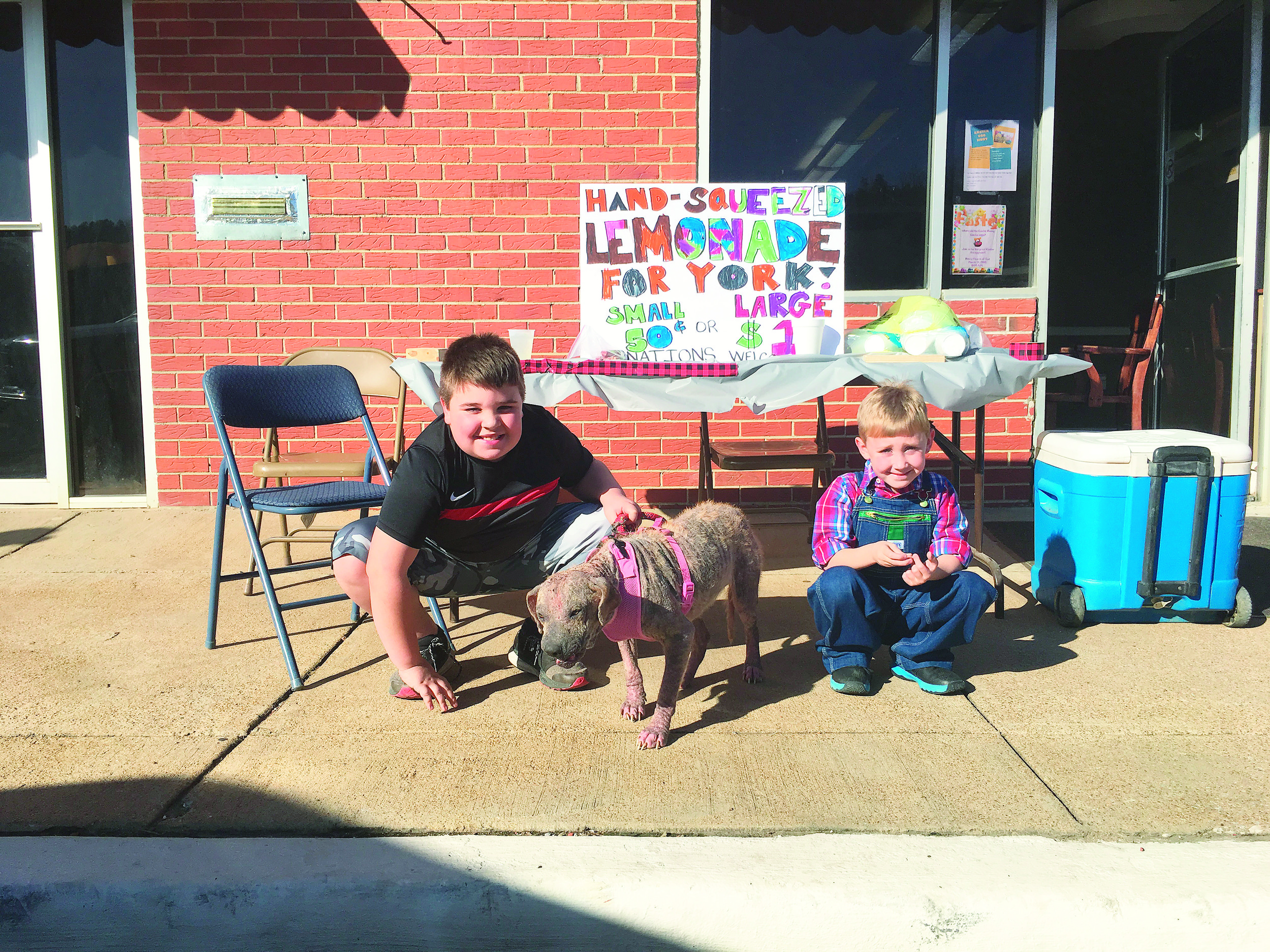Two young boys in Oakman opened a lemonade stand Tuesday afternoon to raise money for York the dog, center. York was recently rescued in Oakman and is in the care of Rescuers United For Furbabies. The money collected will be used for York's medical bills.