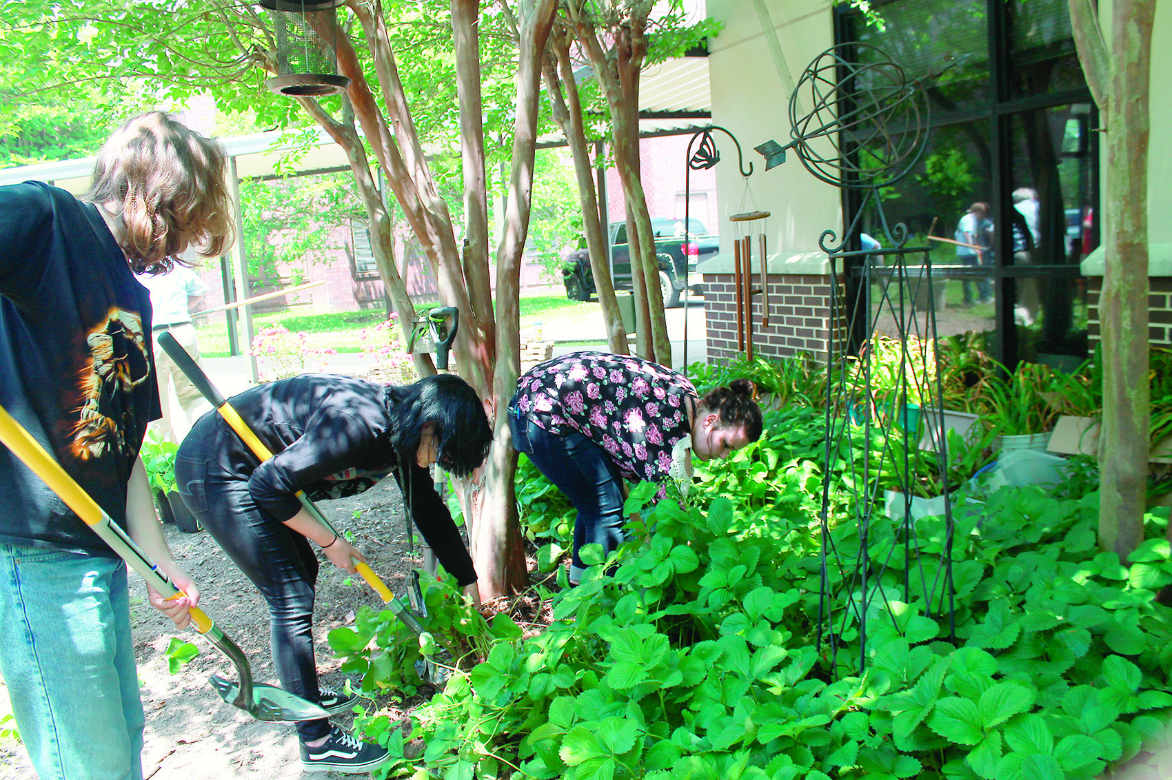 Students from the Walker County Center of Technology's landscape and horticulture science class were at the Walker Cancer Care Center several days this week working in the garden maintained by the Jasper Herb Society. The garden, which was established 16 years ago, includes a variety of herbs and flowers as well as a large strawberry patch. It is located outside the windows of the Center's chemotherapy floor so that patients can look out on a serene environment while receiving treatment. Herb Society member Nora Estill said the work this week is part of a project to establish raised beds in the garden.