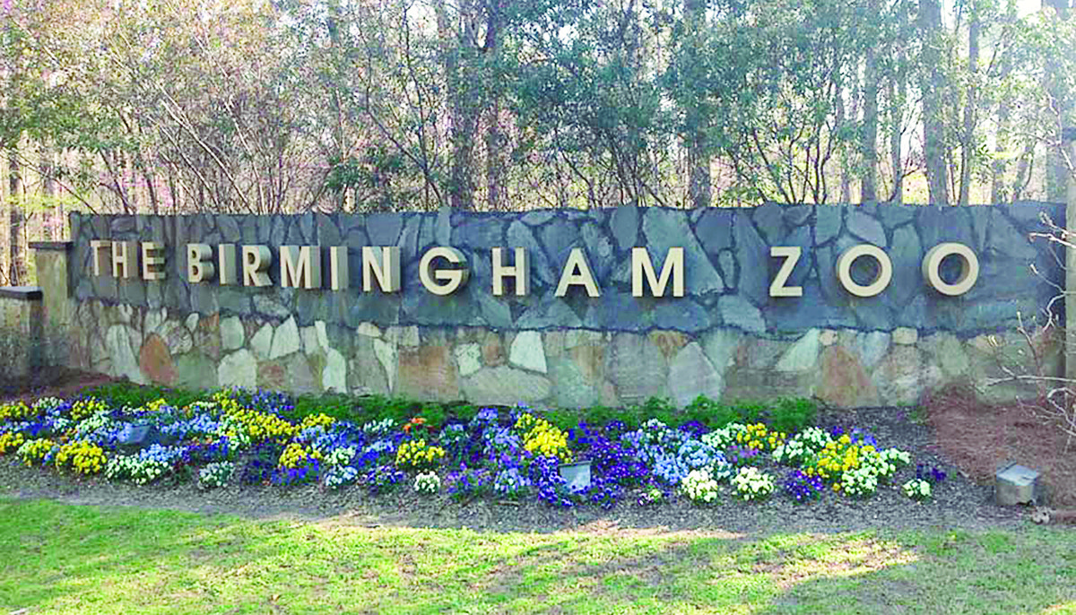 The Birmingham Zoo, which includes almost 1,000 animals on the more than 60-acre proprerty, attracted more than 600,000 people in 2017. That number is expected to grow in 2018.