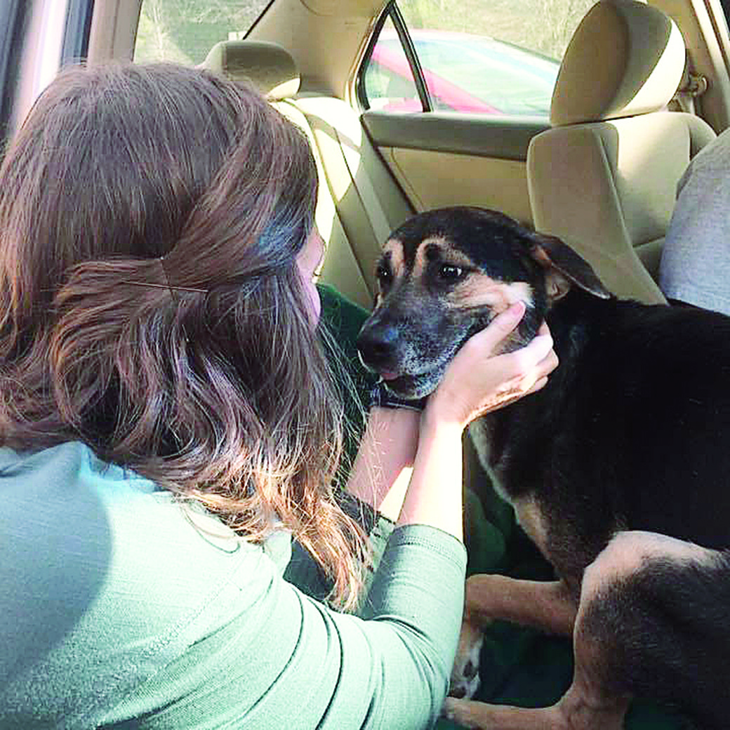 Paulette Berger says goodbye to one of her favorite foster dogs, Mac, who recovered from being shot and is now living the dream life up North.