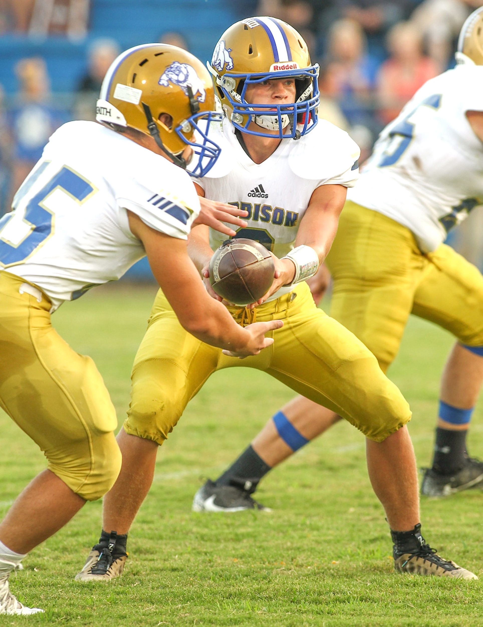 Addison quarterback Zayne Guthrie hands the ball off to Colton Tyree (45) during last week's win over Curry. The Bulldogs host perennial Class 3A power Piedmont tonight. Piedmont is 41-3 over the last three seasons.