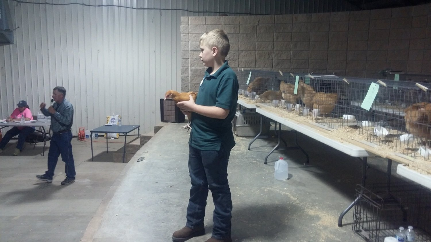 Alabama 4-H students from Walker and Winston County will show the chickens they have raised as part of the 2018 Chick Chain project on Saturday, Sept. 29 at 4 p.m. at the Northwest Alabama Fair. The chickens will be auctioned beginning at 6 p.m. Breeds include Rhode Island Red, Buff Orpington, Gold Laced Wyandotte's, Barred Plymouth Rock and Easter Eggers.