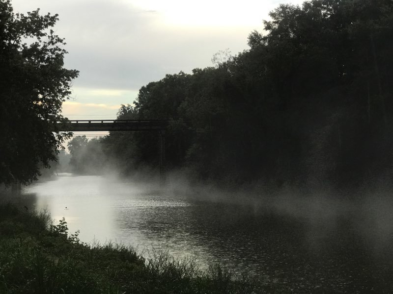 The Mulberry Fork area of the Black Warrior River was affected by a spill by a Tyson Foods plant in June.