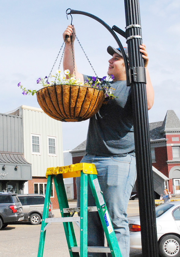 Wilton FFA students hung flower baskets throughout the downtown Wilton area on Friday, May 18. Pictured is Durant freshman Brian Graves hanging a basket along Cedar Street.