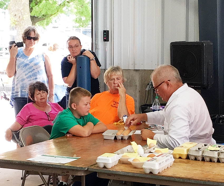 Scott County 4-H'er Cole Engelbrecht watches and learns as the judge examines his egg entry in the 4-H Poultry Show at the Fair.