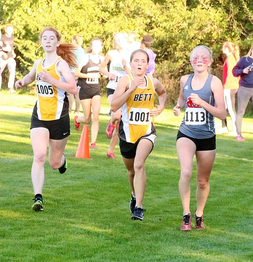 Abbi Lafrenz's top 15 finish propelled her to state.
